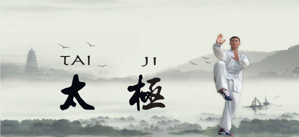 taichi-1-e1461876599998