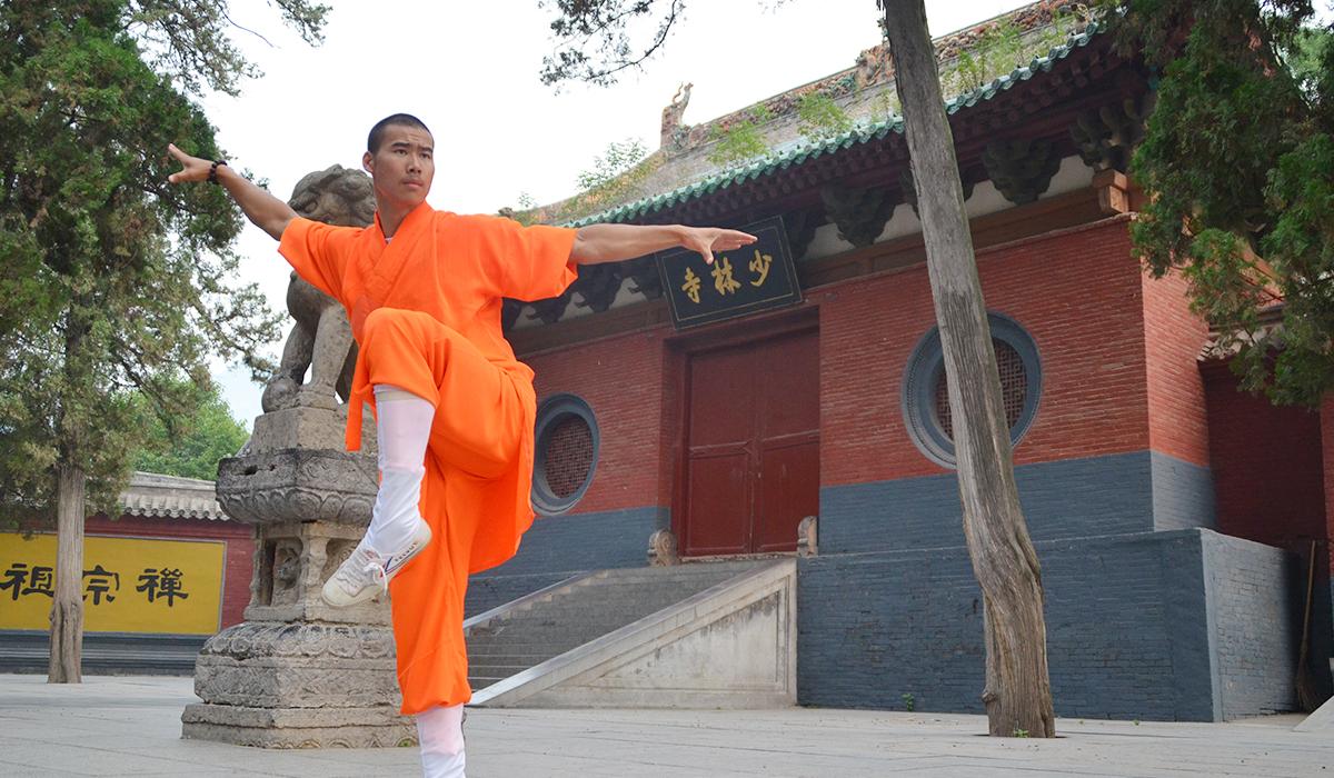 Ho Kuen Pak Hoi Pai Kung Fu - YouTube